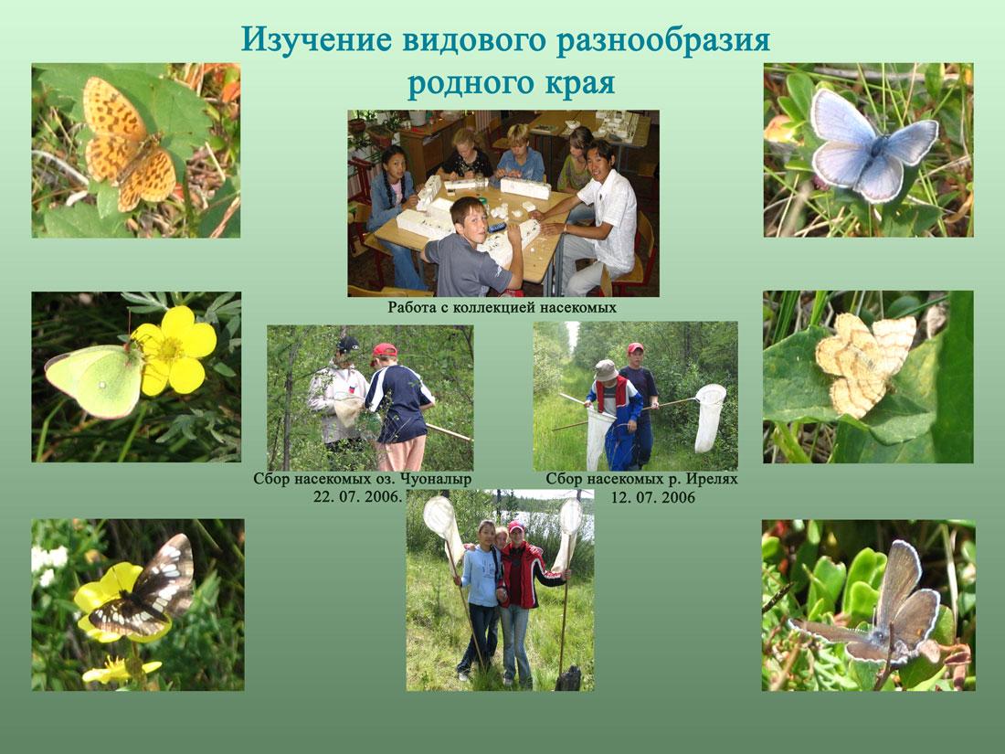 Как изучают природу картинки 195
